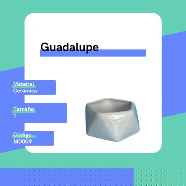 M0009 Maceta Guadalupe Cerámica Replanto
